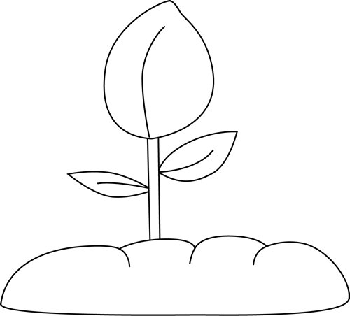 Black and White Plant Clip Art.