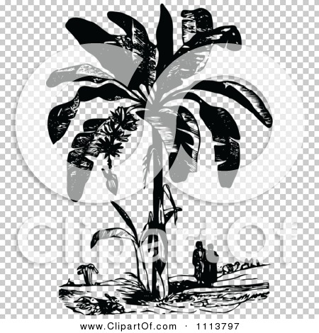 Clipart Vintage Black And White People Under A Plantain Tree.
