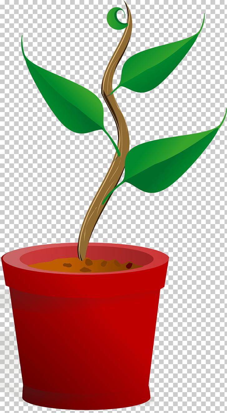 Qué plantas necesitan la planta forma de vida raíz, planta.