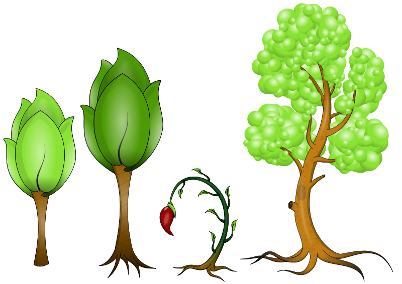 Free Clipart: Plantas.