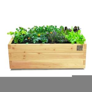 Planter Box Clipart.