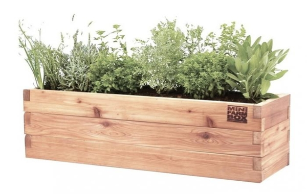 Free Planter Box Cliparts, Download Free Clip Art, Free Clip.
