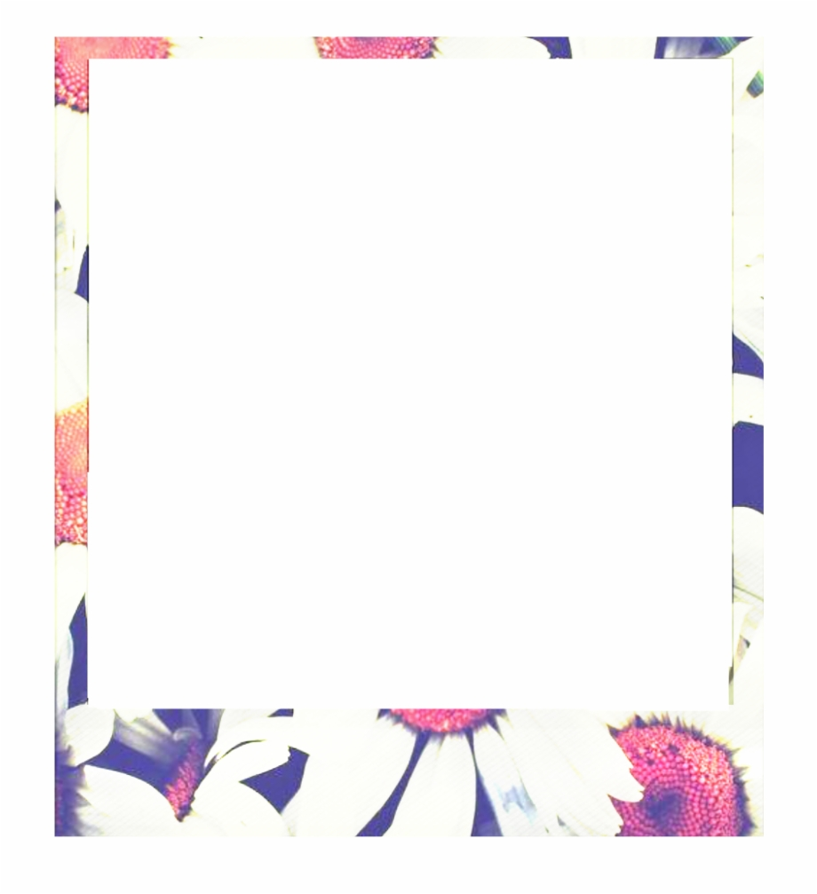 borde #marco #tumblr #png #photo #polaroid #palommzz.