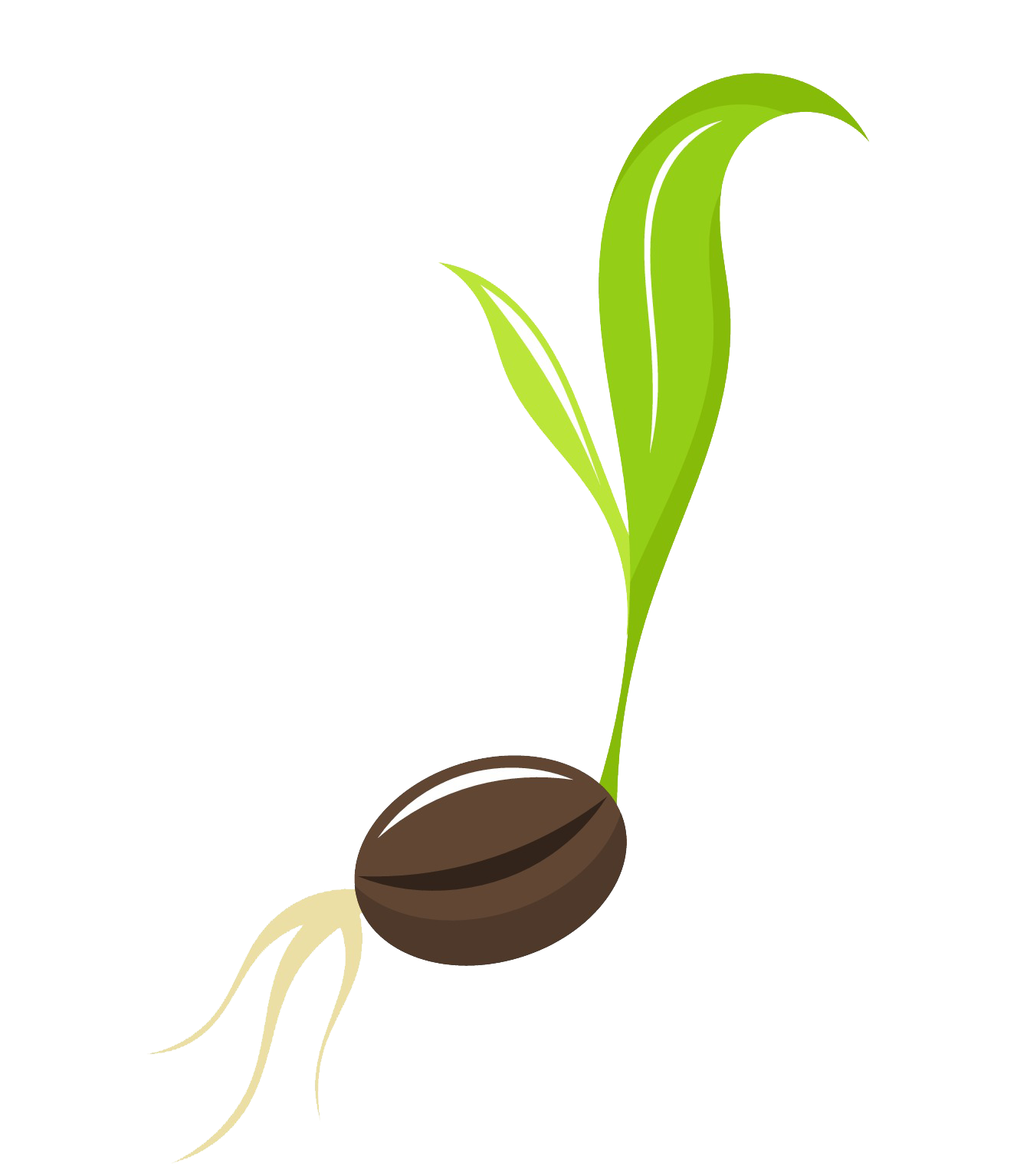 Planting clipart plant seed, Planting plant seed Transparent.