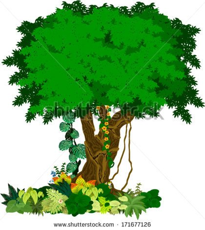 Plants and trees clipart » Clipart Portal.