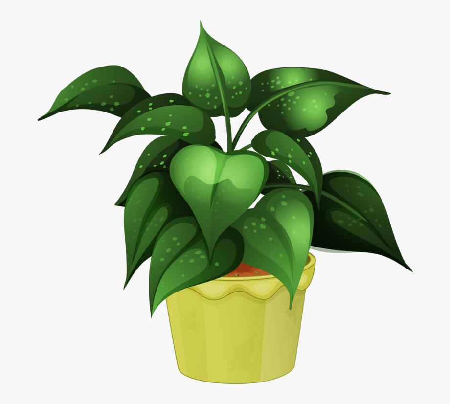 Flower Pot Illustration Png.
