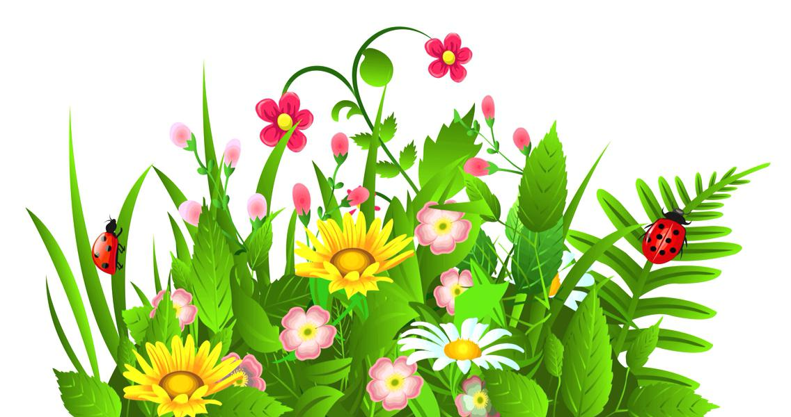 Ocean Plants Clipart at GetDrawings.com.