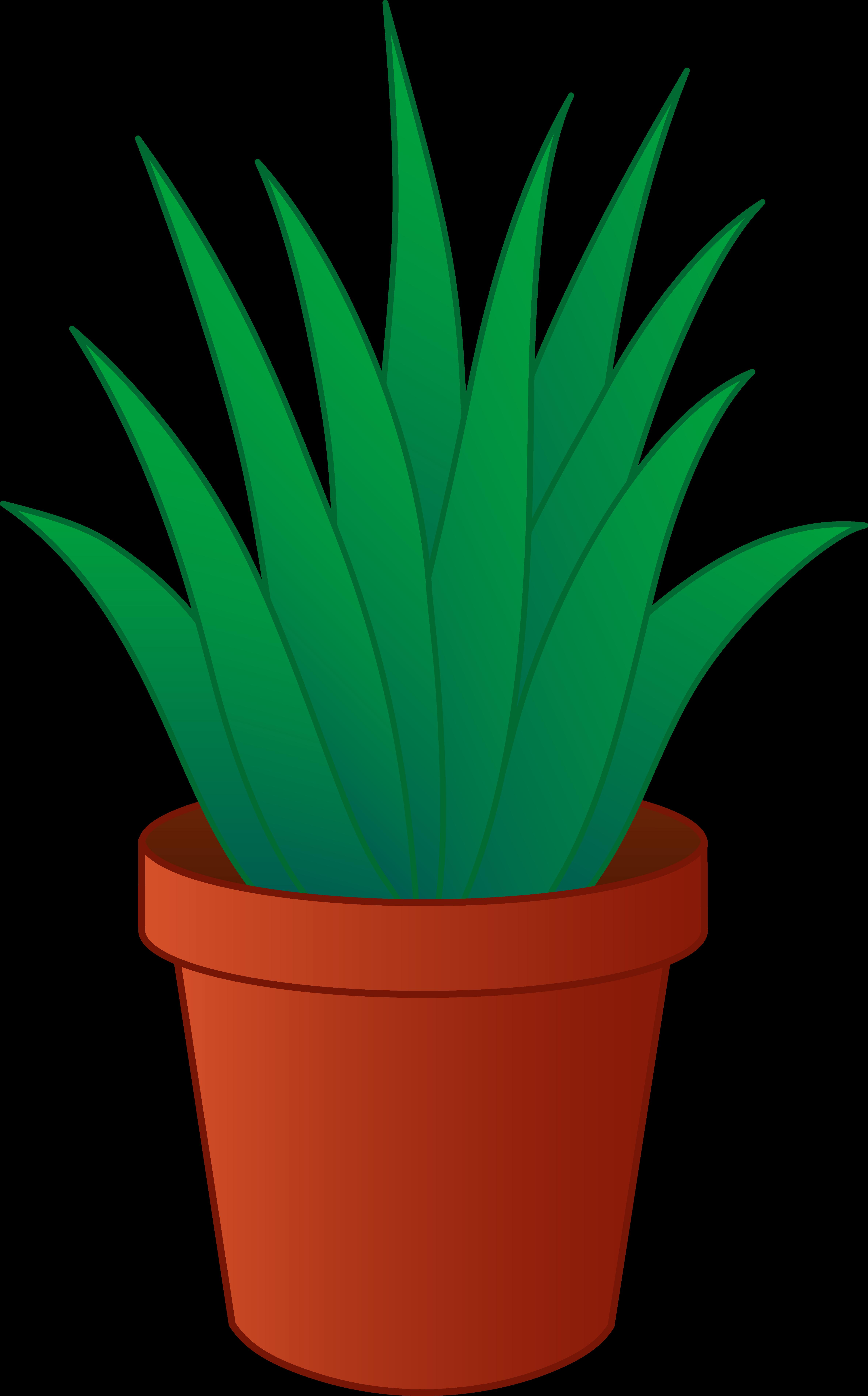 House plants clipart.