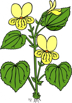 Plants flower clipart - Clipground