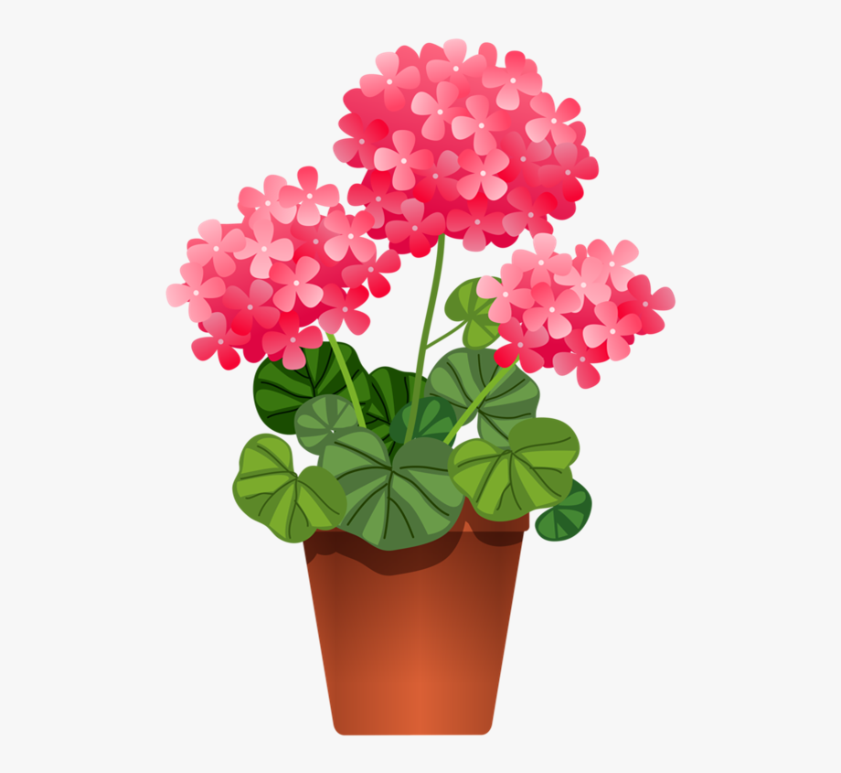 Plants Clipart Flowering Plant.