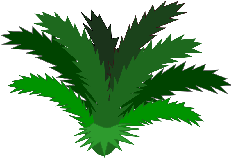 Bushes Clipart Plan Tropical Plants Clipart.