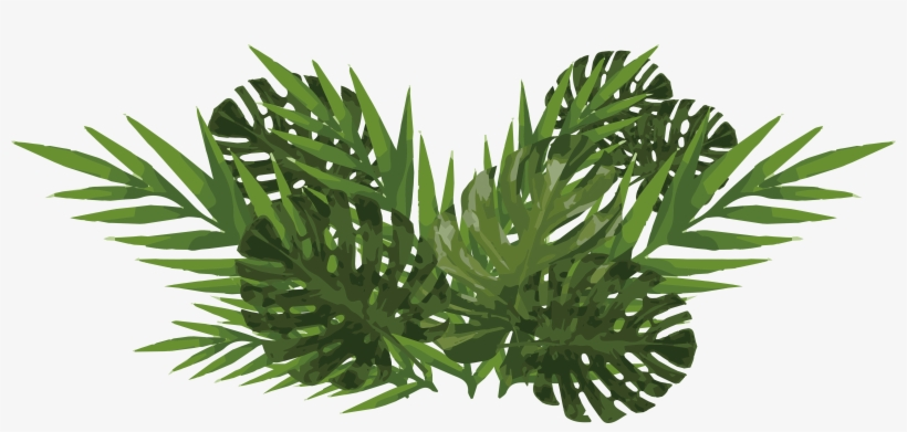 Watercolor Plants Png.