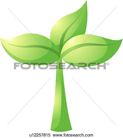 Clip Art of sprouts, seed, plants, plant, sprout, bud, spring.