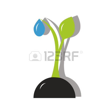 457 Water Shoot Stock Illustrations, Cliparts And Royalty Free.