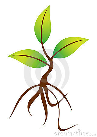 Plant with roots clipart.