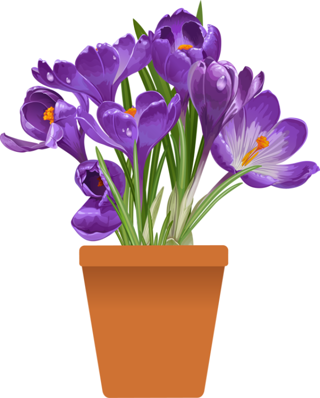 Plants Spring Clipart Clipground