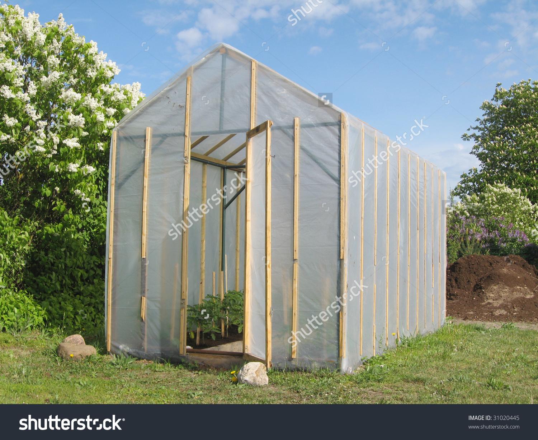 Homemade Simple Plastic Greenhouse Tomato Plants Stock Photo.