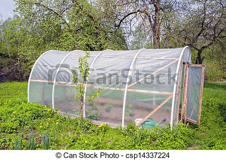 Stock Photo of primitive plastic greenhouse in farm garden.