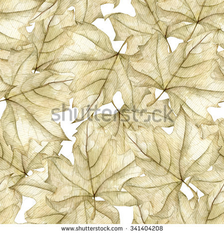 Autumn Transparent Maple Leaves Pattern Background Stock.