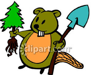 Cartoon_Beaver_Plating_A_Tree_Royalty_Free_Clipart_Picture_090226.