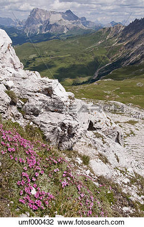 Stock Photo of Italy, View from Summit Mt. Petz to Langkofel.