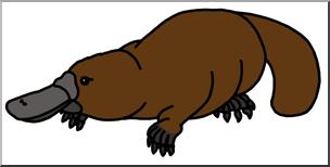Clip Art: Platypus color I abcteach.com.