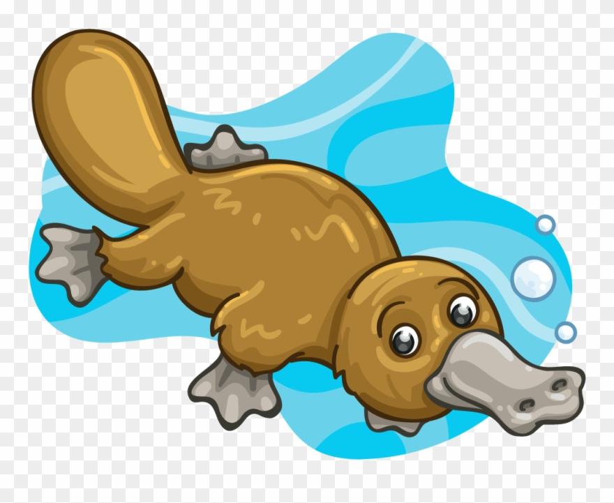 Mammal Clipart Platypus.