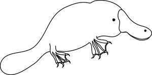 Best Platypus Clipart #10020.