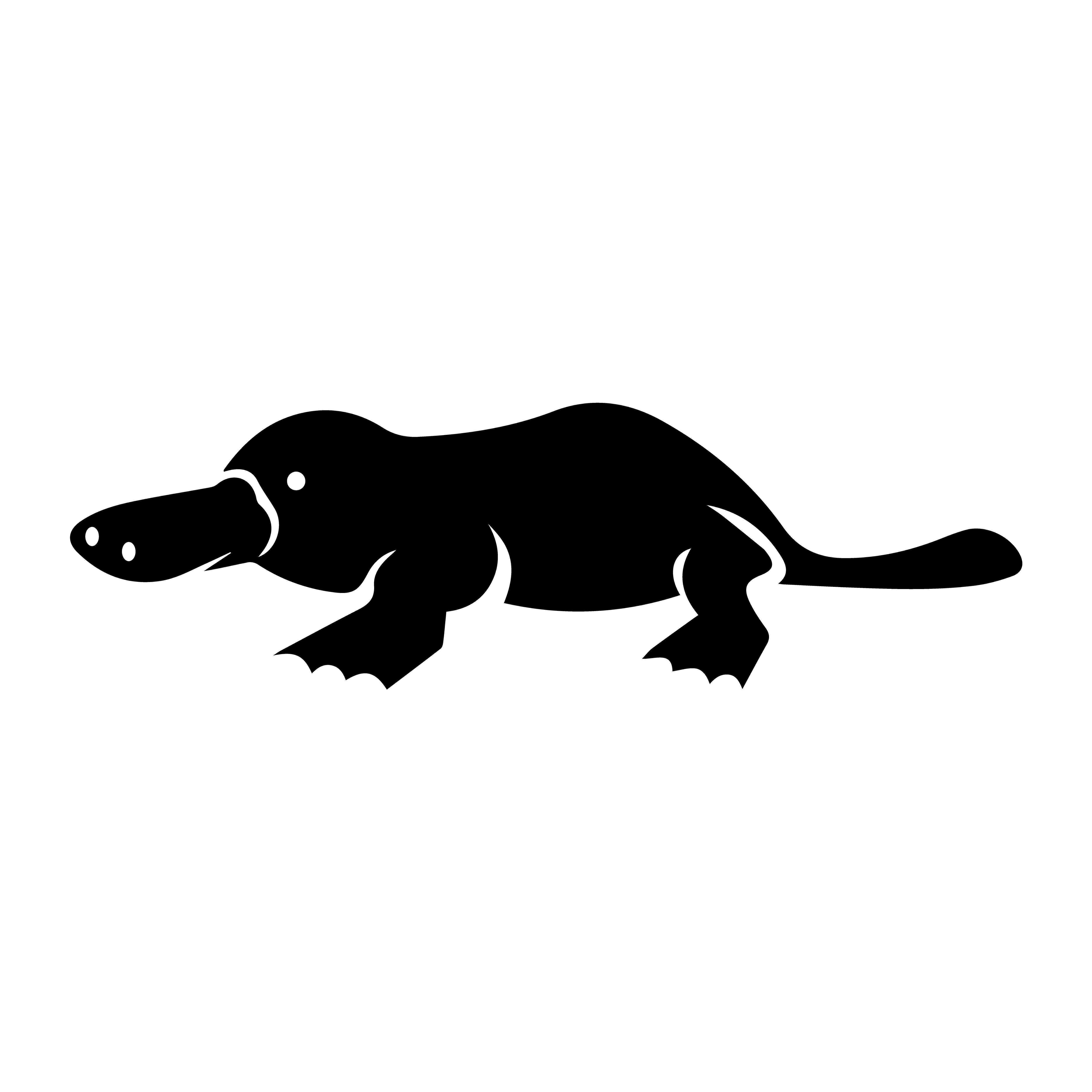 Platypus Icon Vector.