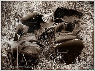 not today satan photos on Flickr.