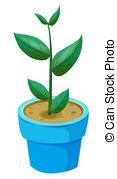 Pleniflora Stock Illustrations. 3 Pleniflora clip art images and.