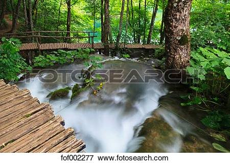 Picture of Europe, Croatia, Jezera, View of boardwalk at plitvice.