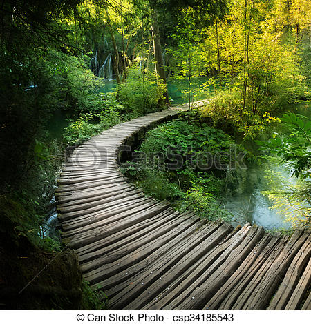 Stock Photo of Deep forest stream. Crystal clear water. Plitvice.