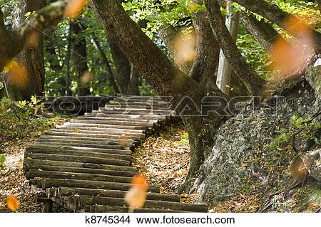 Stock Photo of Steps at Plitvicka Jezera.