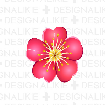 Illustration of plum flower|Pictures of clipart and graphic.