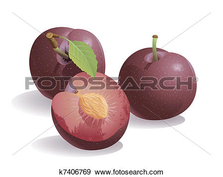 Plum Clip Art Royalty Free. 5,391 plum clipart vector EPS.