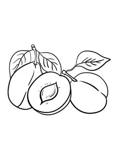 Pineapple fruits coloring pages for kids, printable free.