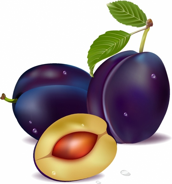 Plums Clipart.