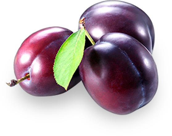 PNG Prune Transparent Prune.PNG Images..