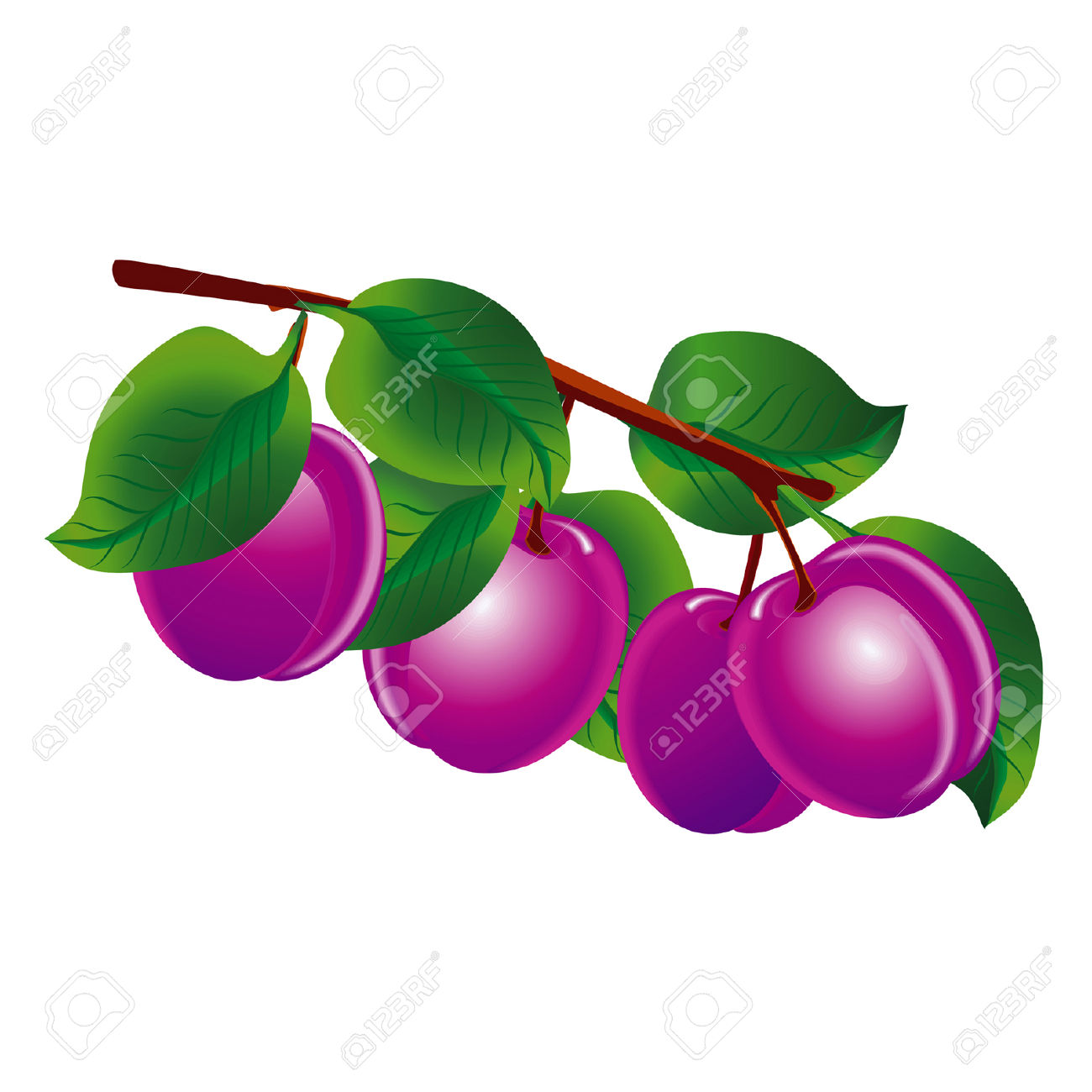 Plum Tree Clip Art.