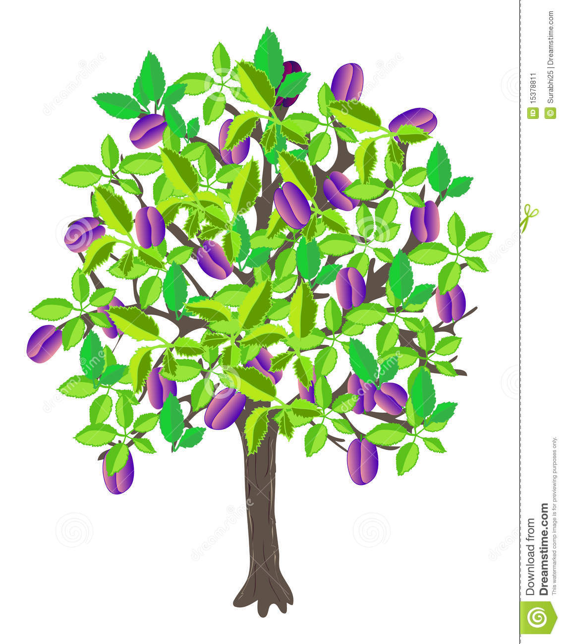 Plum trees clipart.