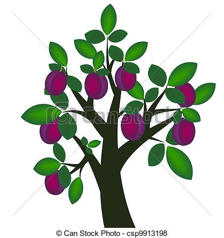 Plum tree Illustrations and Clip Art. 1,076 Plum tree royalty free.