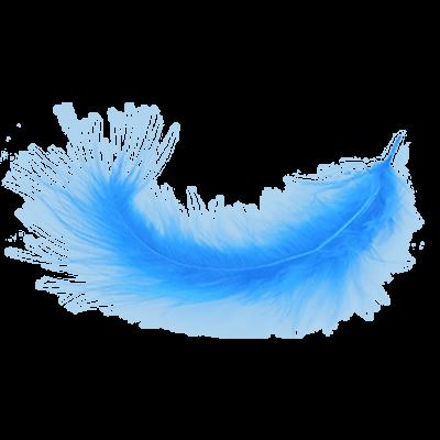 Plumas imagen PNG transparente.
