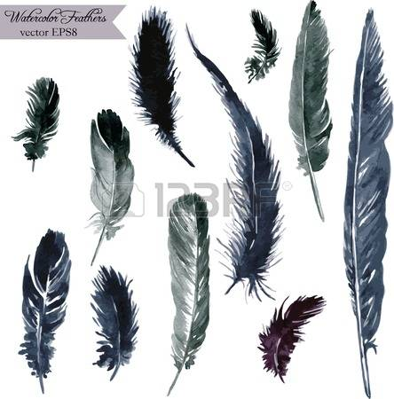 6,254 Plumes Stock Vector Illustration And Royalty Free Plumes Clipart.