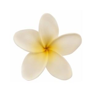 Clip art plumeria flower.