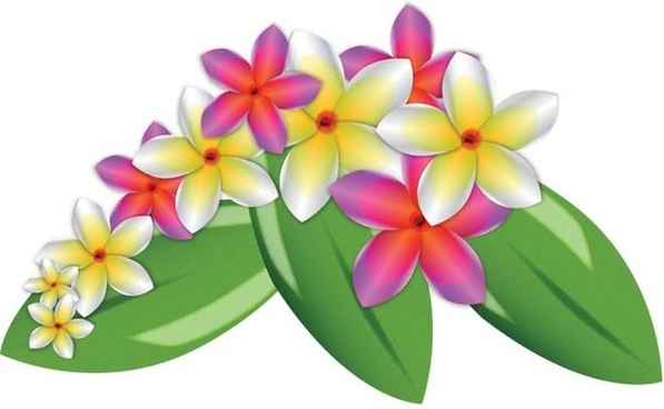 Plumeria flower vector clip art free vector download (212,869 Free.