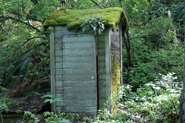 Free pictures OUTHOUSE.