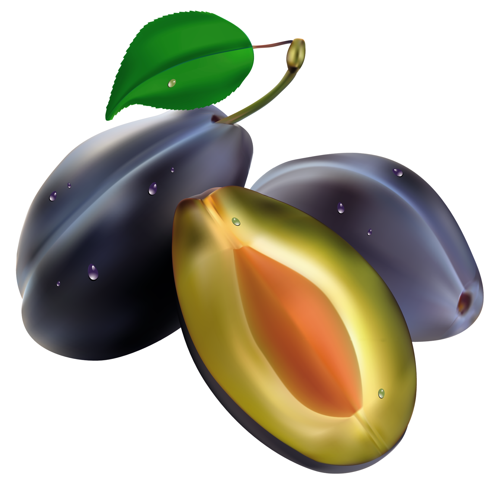 Free clipart plums.