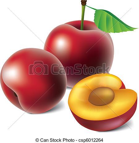 Plum Illustrations and Clip Art. 7,091 Plum royalty free.