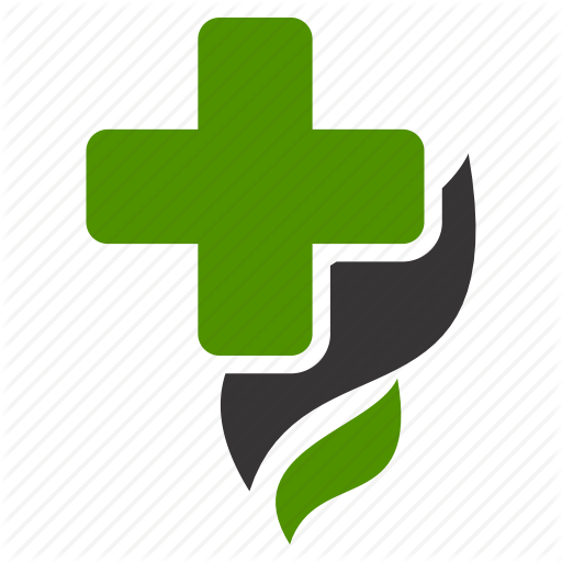 Doctor Plus Logo Png Vector, Clipart, PSD.